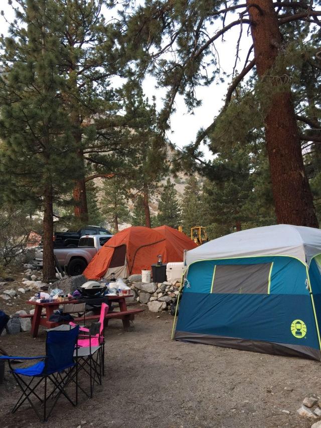 Glacier Lodge Campsite